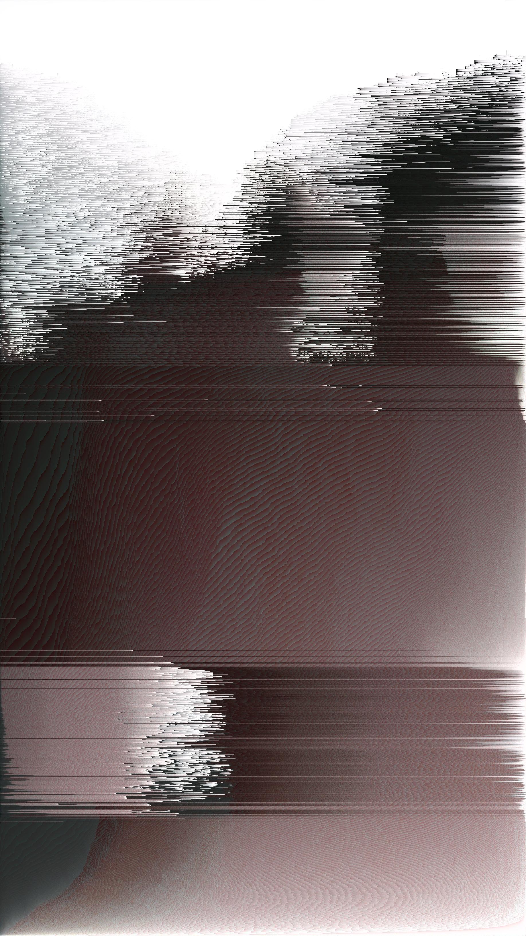 shad1_2_2_1